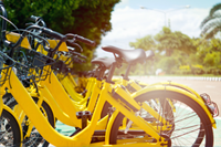 The Regulation of Disruptive Innovations: The Case of Dockless Bicycle Hire